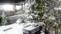 雪景色0122①b