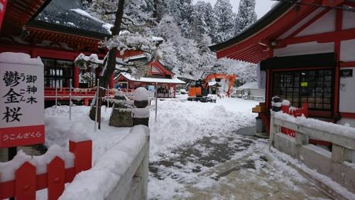 20180202 金櫻神社 (1)