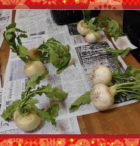野菜販売②