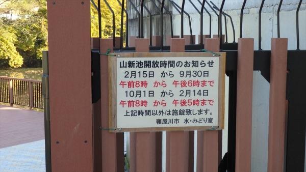 shrimp cafe_0391