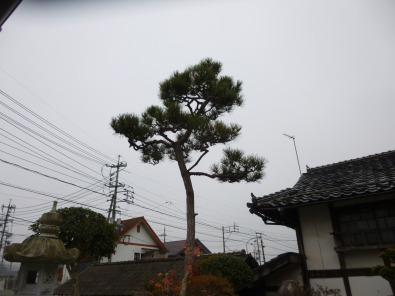 s_P1080041.jpg