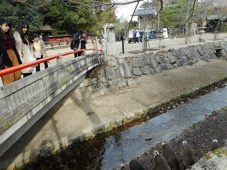筋交い橋12-23