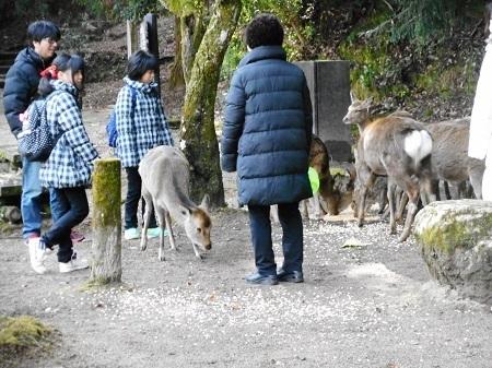 もみじ谷2-11-1
