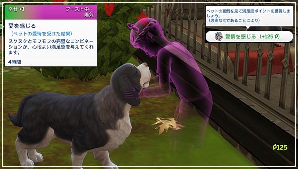 CandD-Hjikata20-23.jpg