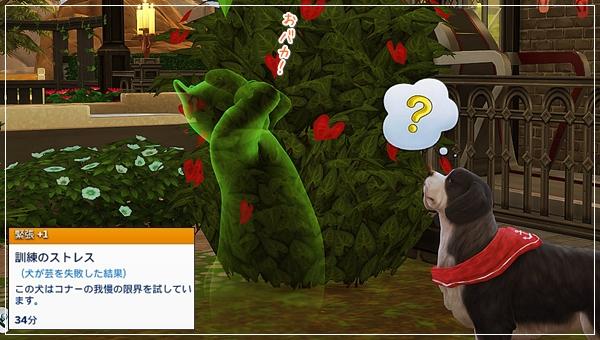 CandD-Hjikata20-24.jpg