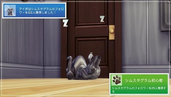 CandD-Hjikata21-27.jpg