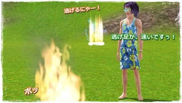 CandD-Hjikata21-3.jpg
