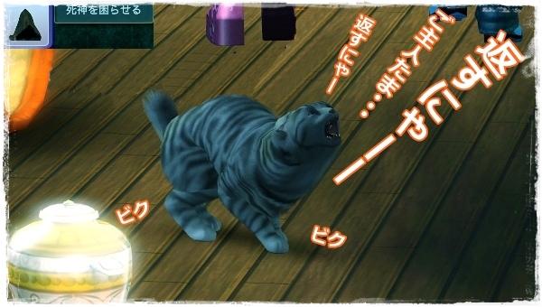 CandD-Hjikata21-5.jpg
