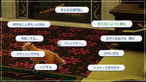 CandD-Hjikata21-50-1.jpg