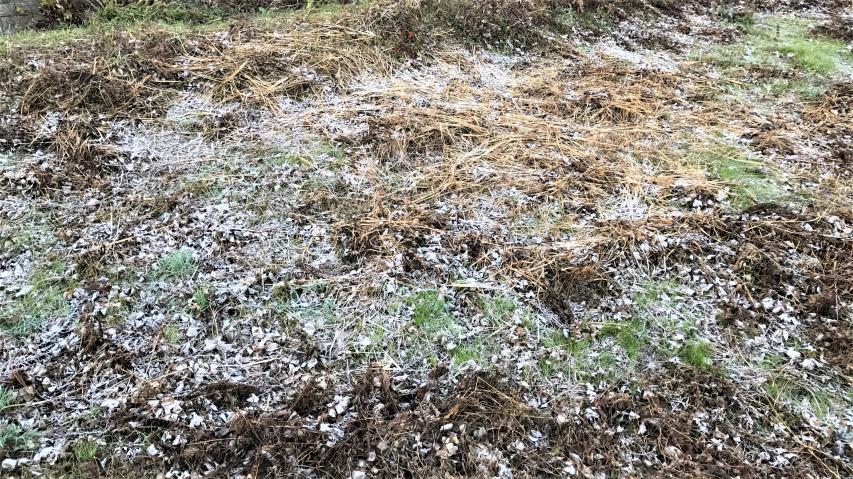 2017年12月4日朝の霜 南あわじ市神代浦壁