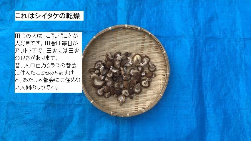 干シイタケ作りは簡単