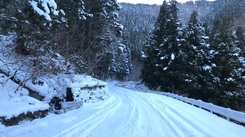 路面は凍結