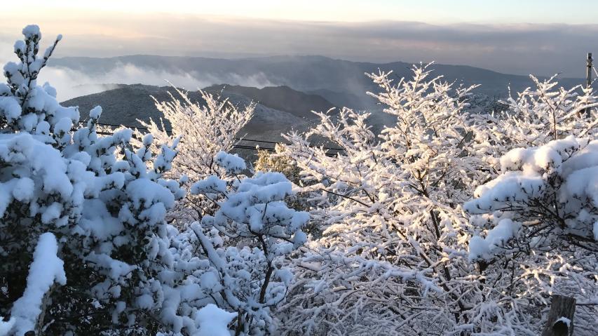 2018年1月5日 諭鶴羽山の山頂