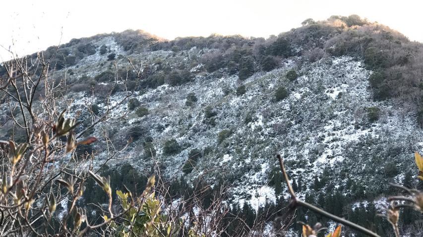 山の北斜面には雪が残る