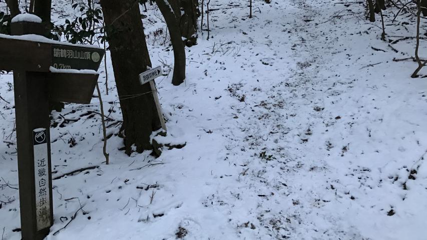 登山道には足跡がたくさん