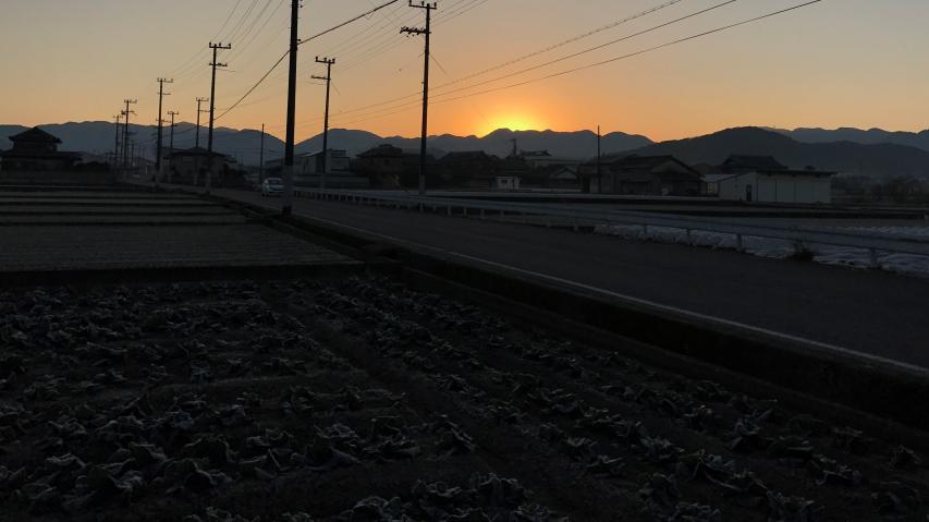 南あわじ市の日の出