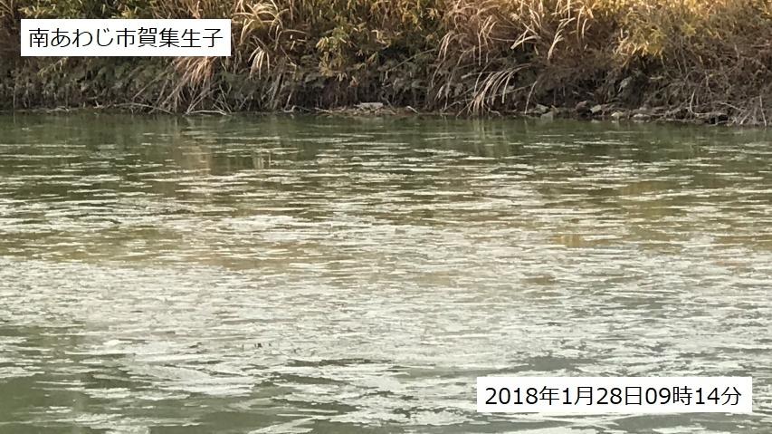 2018年1月28日に南あわじ市のため池に張った氷