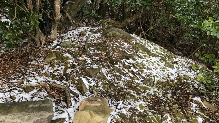 1月28日登山道に薄っすらと雪が