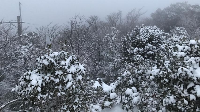 諭鶴羽山の山頂の様子