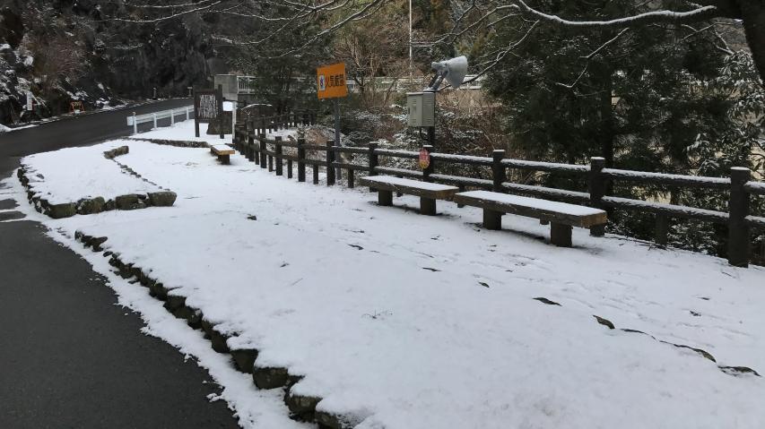 道路上の雪は融けています