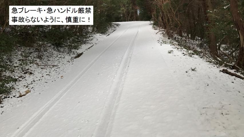 中腹から上は雪道となる