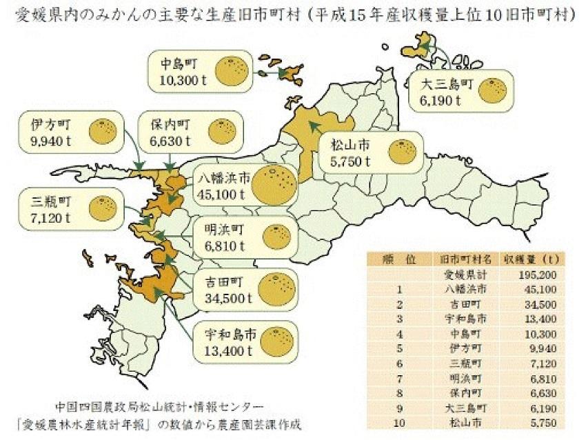 愛媛県のミカン栽培状況