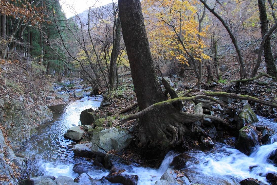寂光の滝下流の風景・11月