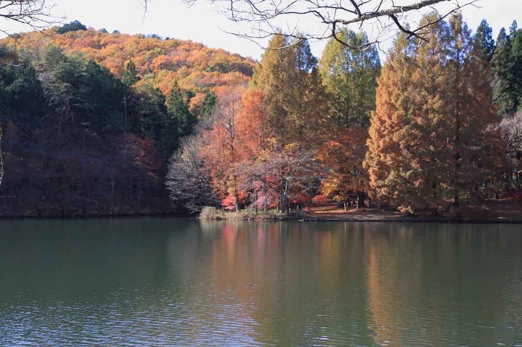 晩秋の湖畔17②