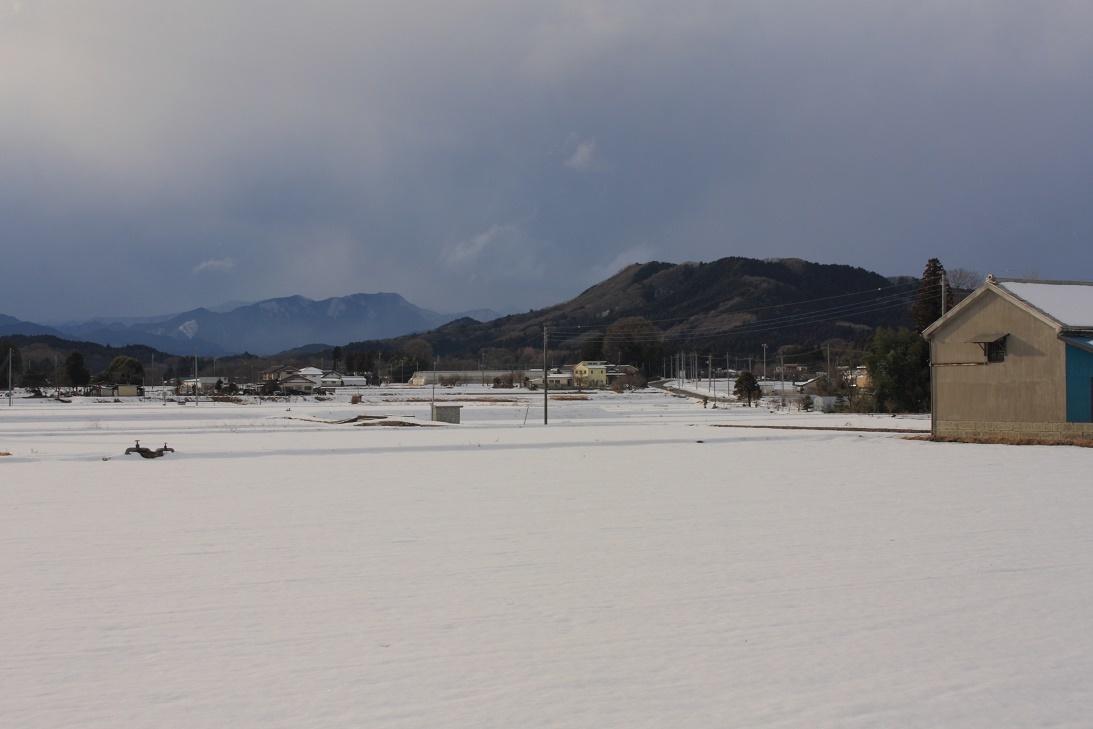 大雪の二日後18①