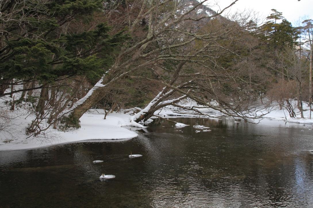 冬の湯ノ湖18⑤