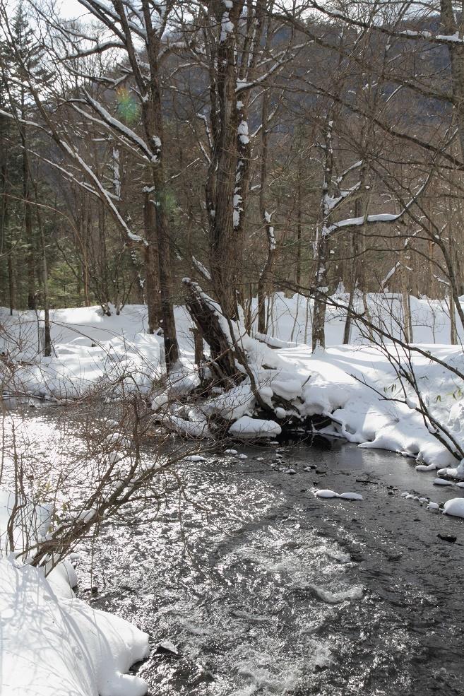 冬の湯川・滝壺付近