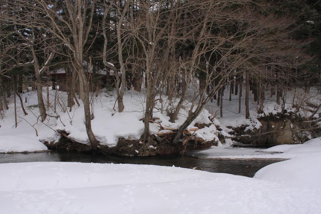 日光市湯西川の雪景色18④