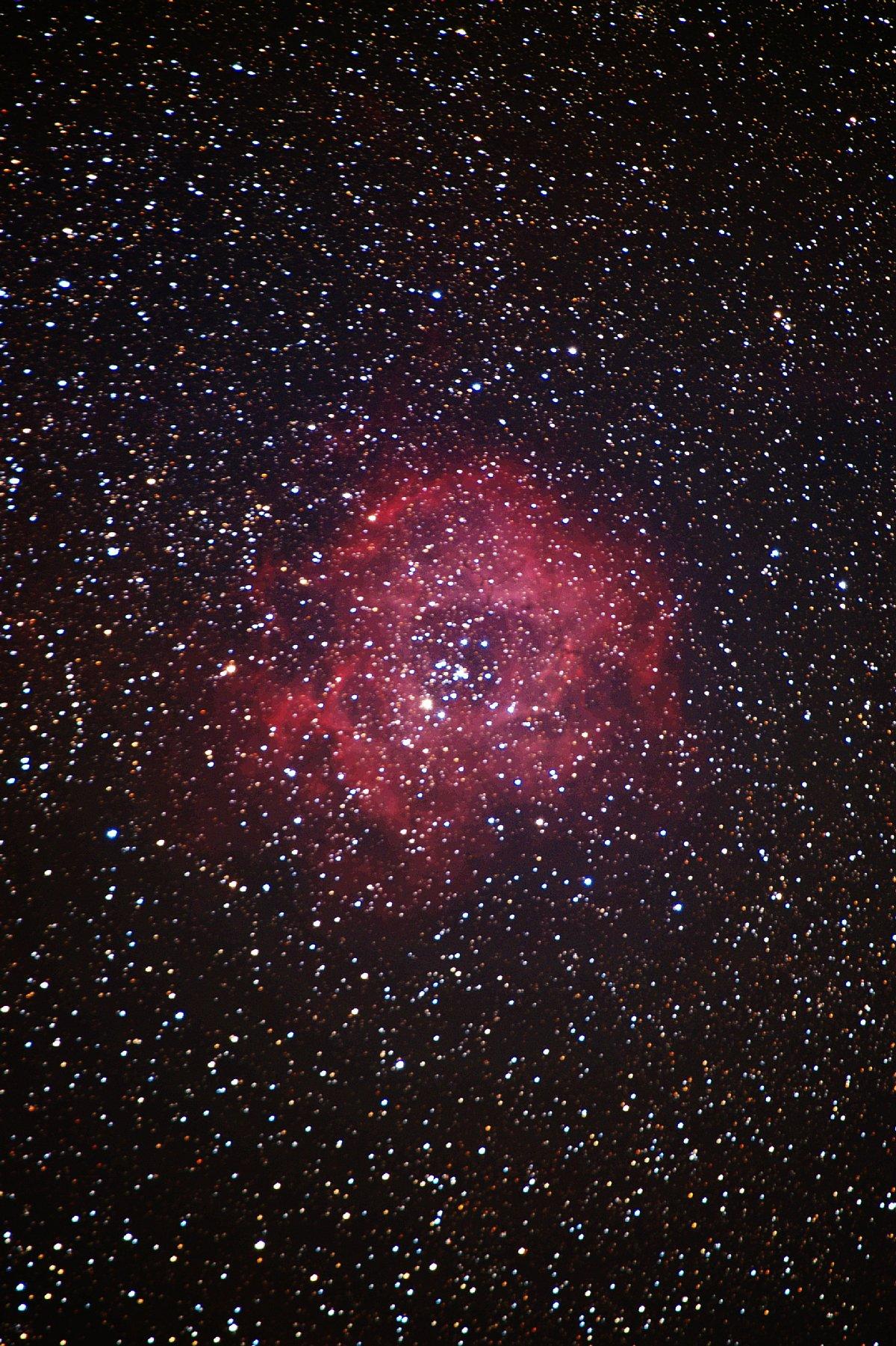 【星雲】ばら星雲