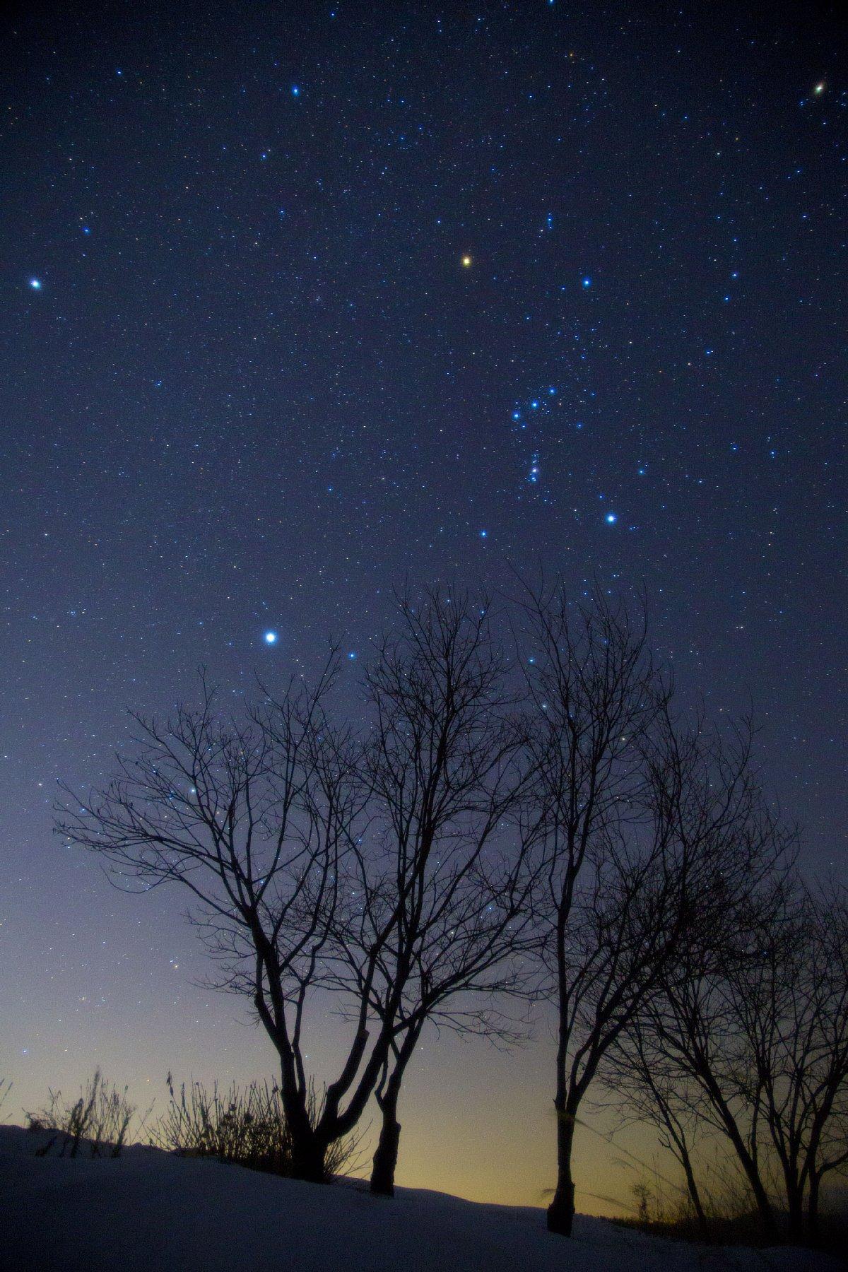 【星景】オリオンと冬の大三角