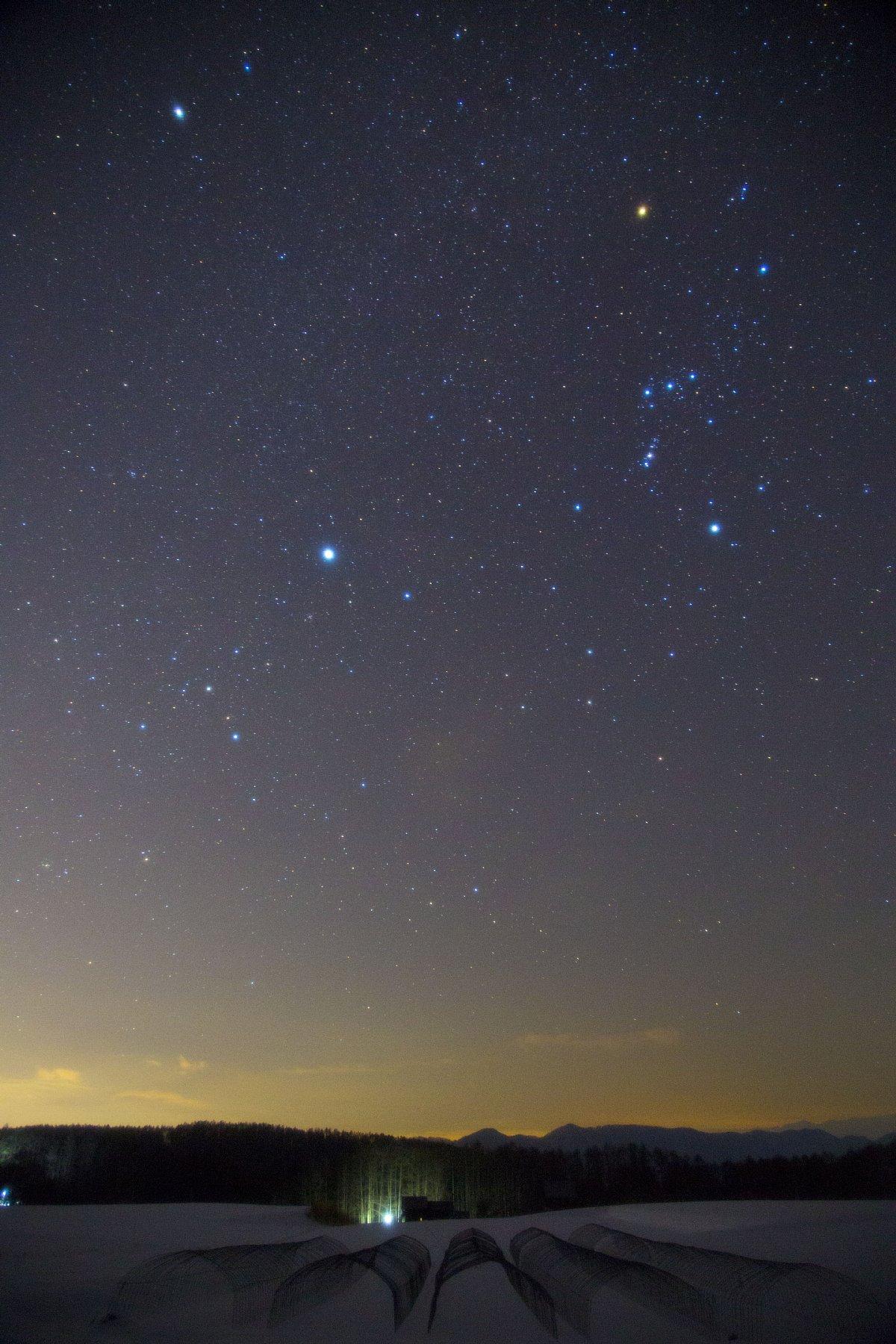 【星景】冬期休閑の耕地と冬の大三角