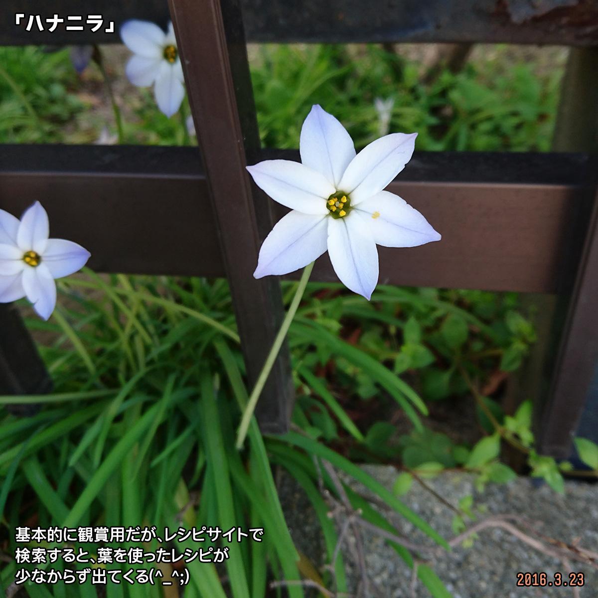DSC_0164_1_20180121144632750.jpg