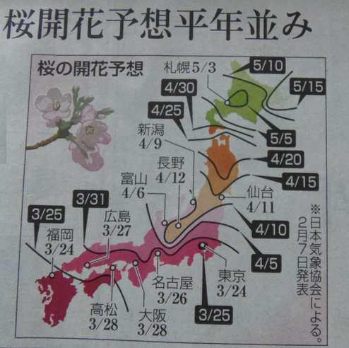 20180208 桜の開花予想