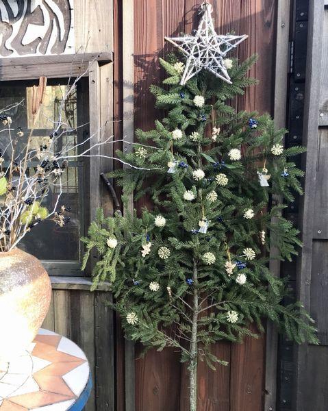 12,11平面クリスマスツリー1