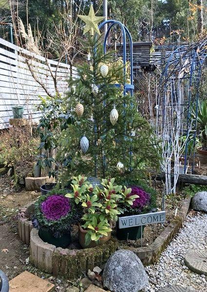 12,23平面クリスマスツリー2