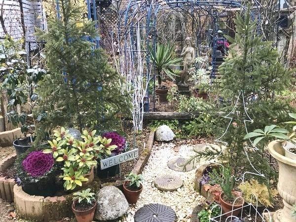 1,4冬の庭-2