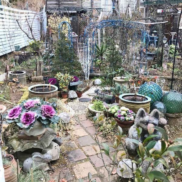 1,4冬の庭ー1