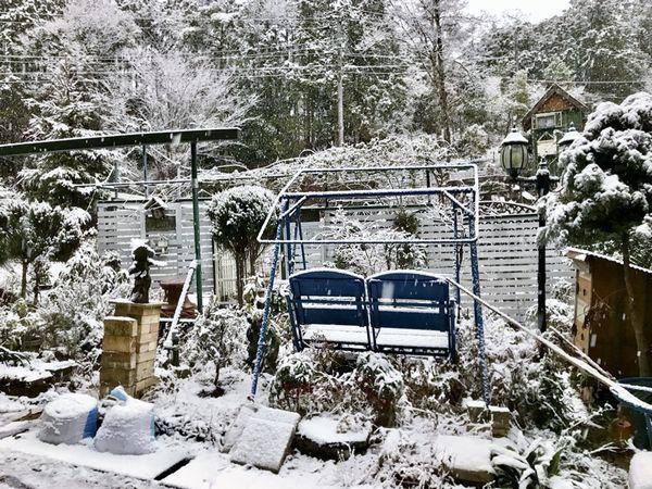 1,22雪の山庭ー1