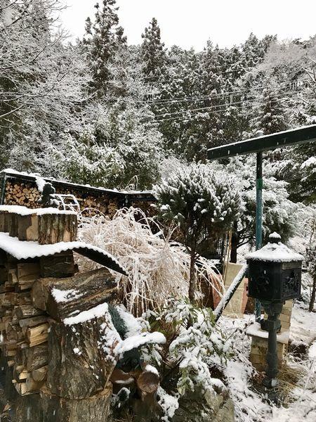 1,22雪の山庭ー3