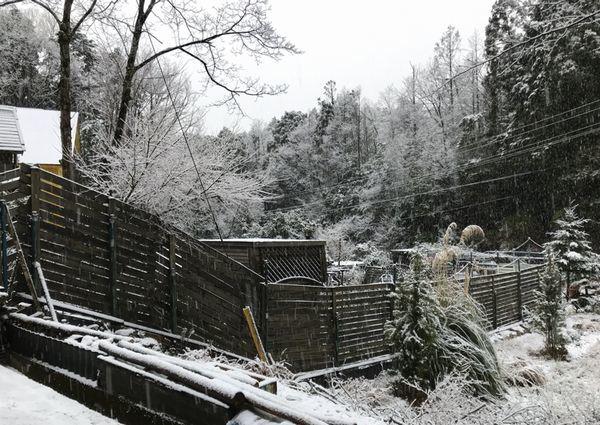 1,22雪の山庭ー4