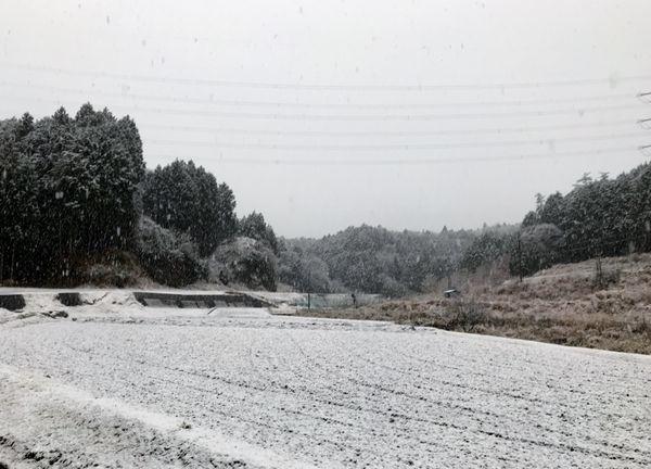 1,22雪の山庭ー5