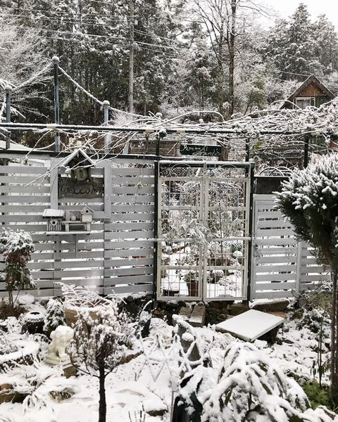 1,22雪の山庭ー6