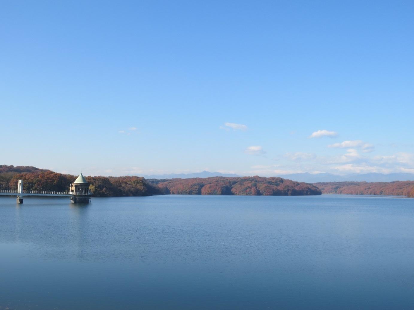 IMG_1612狭山湖