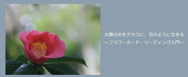 花のクラスss