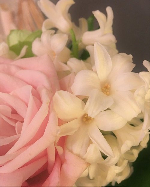 mahina bouquet