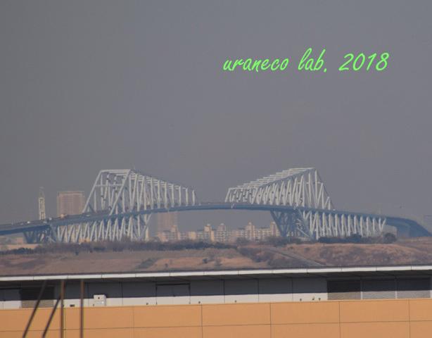 1月11日ゲートブリッジ